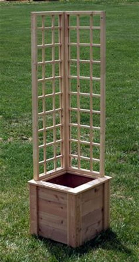 Small Trellis Planter by Clematis Planters And Morning Glories On