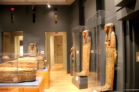 michael c carlos museum permanent collection ancient next stop decatur ancient worlds await you at the