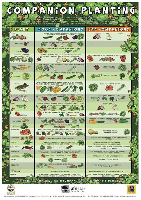garden chart companion planting chart growin crazy acres