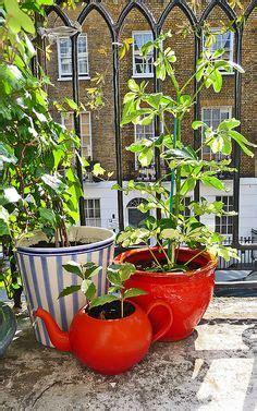 Garden Teapot Planter by 1000 Images About Teacup Teapot Planters On