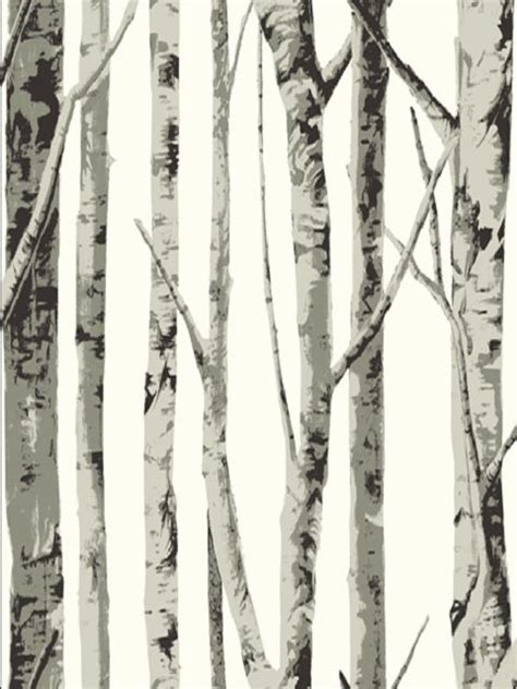 black and white tree wallpaper once upon a time the birches tree wallpaper birch tree wallpaper and