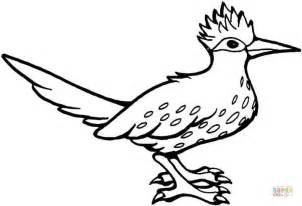Roadrunner Bird Coloring Page | roadrunner bird coloring page free printable coloring pages