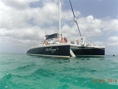 catamaran barbados cool runnings cool runnings 3 foto di cool runnings catamaran cruises