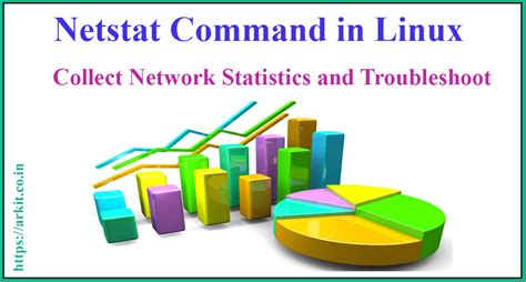 Tutorial Netstat Linux | linux netstat command can help you to troubleshoot network
