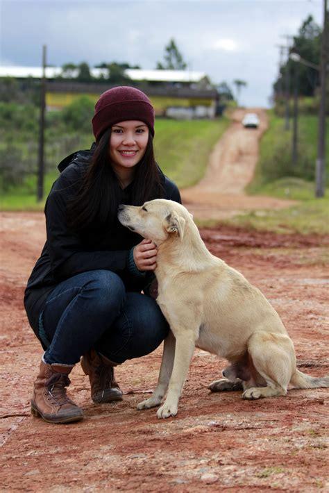 working with dogs undergraduate eugenia kwok working with community dogs in brazil ubc animal welfare