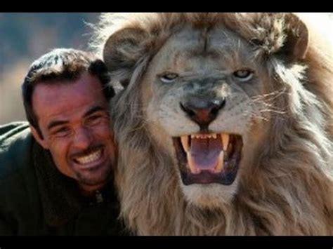 imagenes de leones asesinos incre 237 ble amistad entre hombre y animales salvajes leones