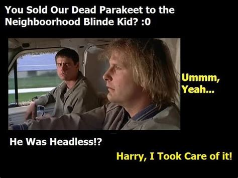 dumb and dumber on quot quotes from dumb and dumber quotesgram