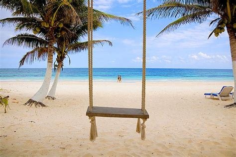 beach swing beach swing tropical pinterest