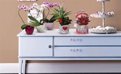 Garten Blumen Kaufen 867 by Pflanzen Kaufen In Gro 223 Er Auswahl Bei Obi