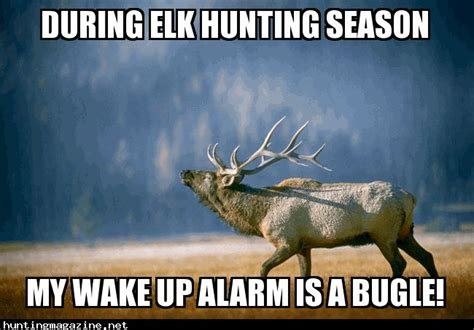 16 best images about memes on pinterest seasons deer