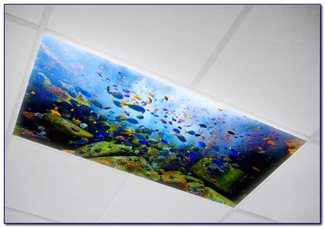fluorescent light covers for kitchen fluorescent kitchen light covers beautiful shark light