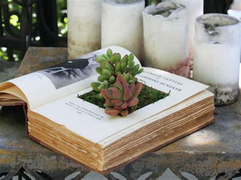 Book Planter by How To Make Your Own Book Planters For Succulents World