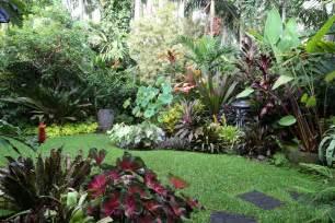 sub tropische tuin advies nodig tuininrichting