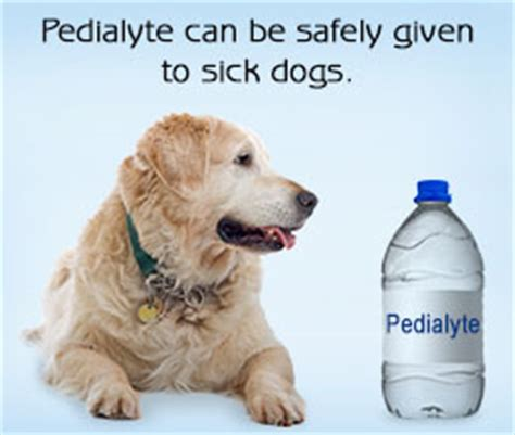 is pedialyte for dogs is pedialyte safe for dogs