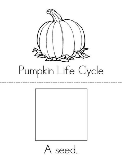 life cycle of a pumpkin coloring page 1000 images about autumn coloring pages worksheets and