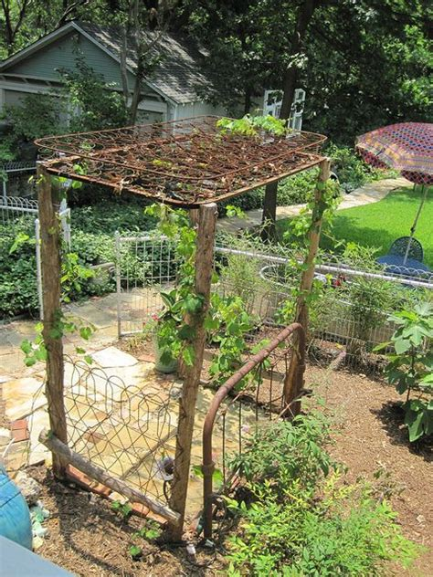 grape arbor with cedar posts and bed springs as a top