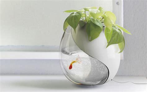vasche per pesci bocce per pesci di design 5 vasche con stile animali