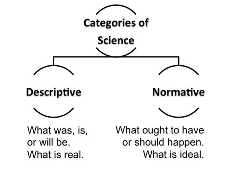 Normative Pattern Definition | not quite convergent normative science is it wrong