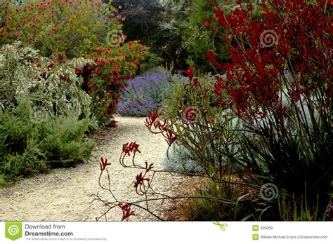 Sf Botanical Garden Map San Francisco Botanical Garden Royalty Free Stock Images Image 420059