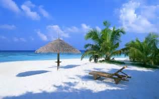 Flowers Panama City Beach Fl - maldives beautiful places to visit
