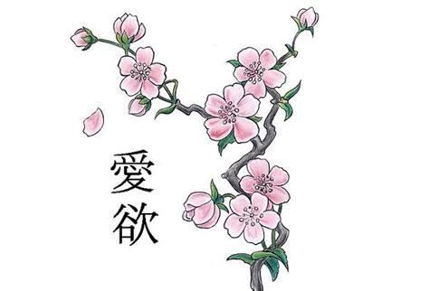fiori di ciliegio giapponesi fiori di ciliegio significato e immagini idee green