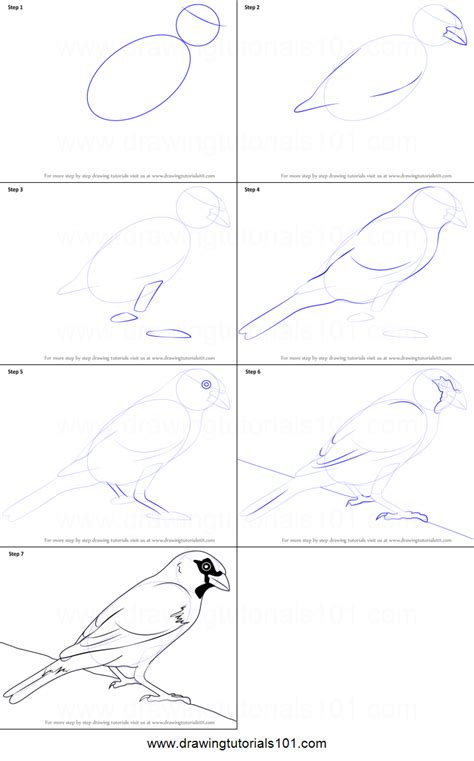 how to draw a house easy drawing step by step tutorials how to draw a house sparrow printable step by step drawing