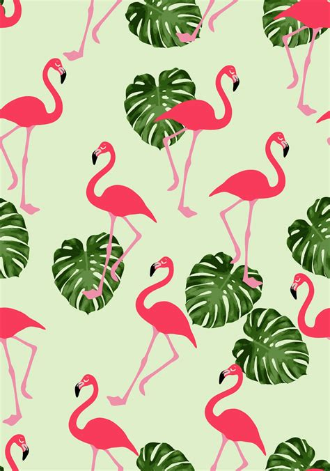 flamingo wallpaper pattern flamingo wallpaper impremedia net