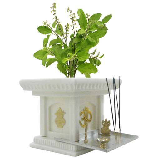 Tulsi Planter by