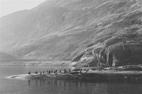 tumblr scottish shag loch coruisk boat trip on the isle of skye haarkon