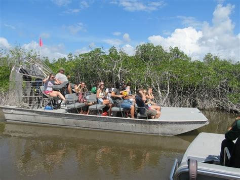 everglades city airboat tours ochopee fl air boat tour picture of wooten s everglades airboat