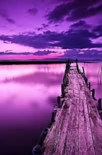 Beautiful Purple Landscapes