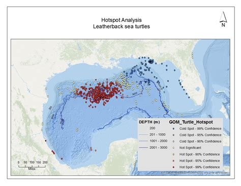 hotspot pattern analysis final analysis for the leatherback dermochelys coriacea