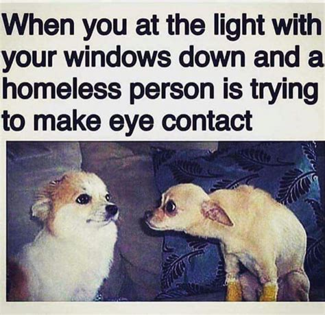 Dog Memes: The Feeling Is Right There.   LOLDAMN.com