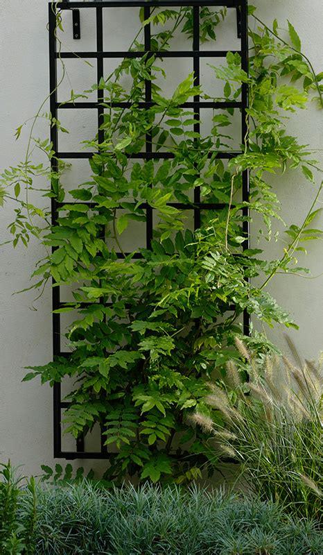 small modern trellis classic garden elements uk