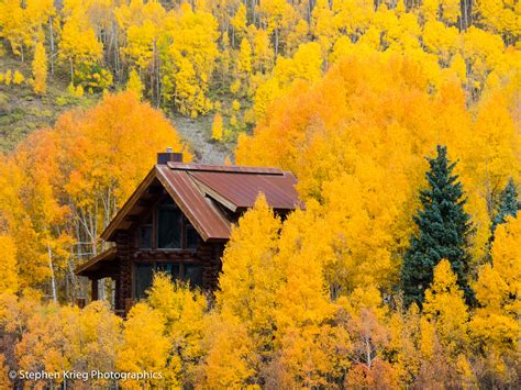 aspen fall colors trout lake stephen krieg photography