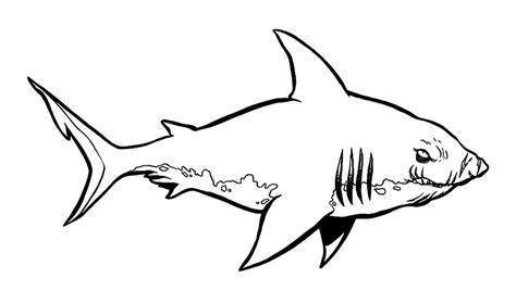 Requin 12 Coloriage De Requins Coloriages Pour Enfants