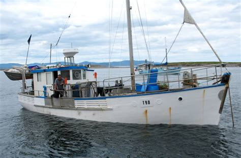 gumtree fishing boat tas fishing boat for sale fishing boat for sale tasmania