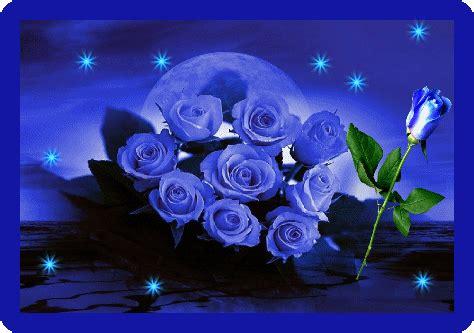 imagenes virtuales con movimiento de amistad 14 im 225 genes de rosas feliz san valentin gif