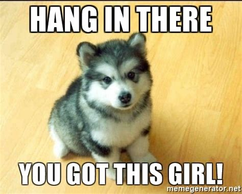 Hang In There Meme - 20 best memes to let you know that you got this