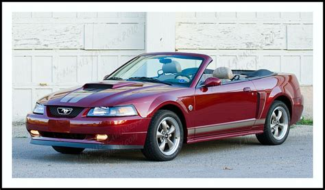 mustang gt 40th anniversary 2004 40th anniversary mustang gt convertible flickr