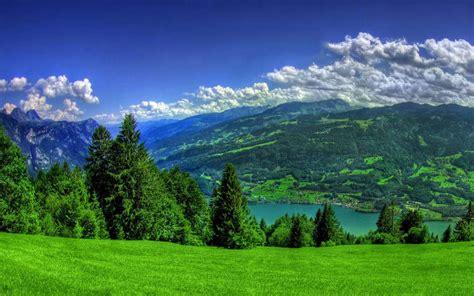 imagenes de paisajes verdes para pantalla fondo escritorio paisaje verde primavera