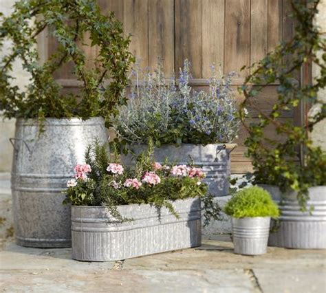 Metal Tub Planter by Galvanized Metal Tubs Buckets Pails As Planters Best
