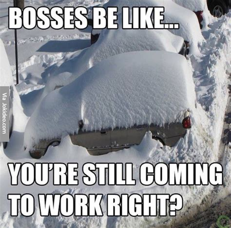 Funny Snow Memes - bosses be like snow meme meme collection pinterest