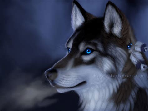 imagenes de anime wolves wallpapers hd lobos hd varias resoluciones 15