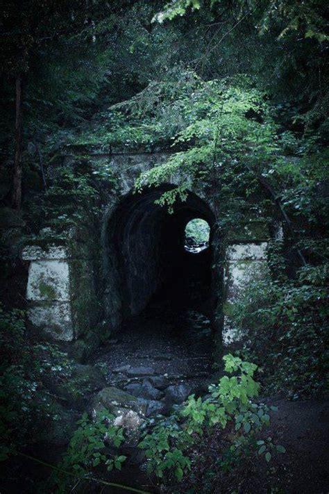 breeden tunnel bridge laurel lake wildlife management area