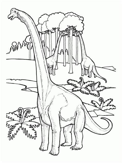dinosaur brachiosaurus free printable coloring pages