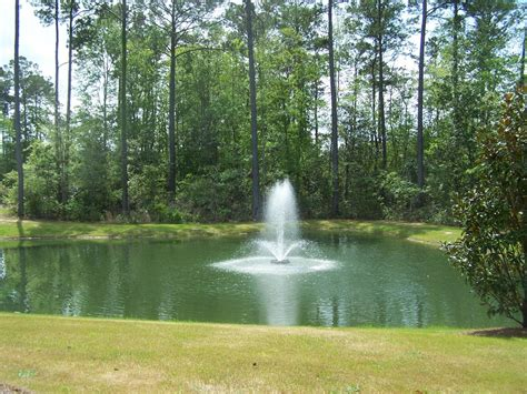 pond with make your yard interesting with the use