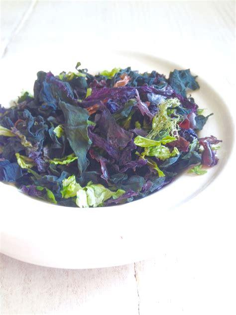 alghe cucina le alghe in cucina