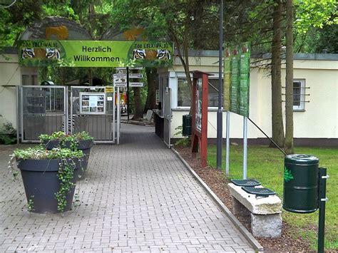 zoologischer garten eberswalde zoo eberswalde der beutelwolf