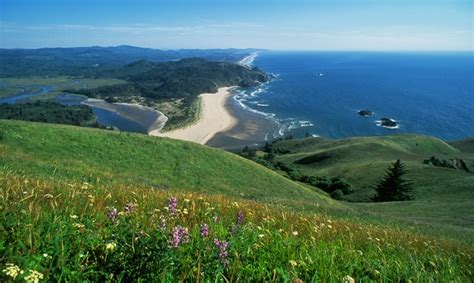 traveling to explore lincoln s 7 things not to miss in lincoln city travel oregon